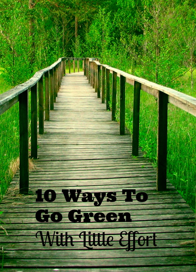 10 Ways To Go Green With Little Effort