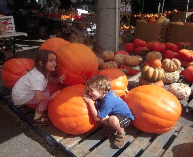 Eco-Friendly Halloween Ideas