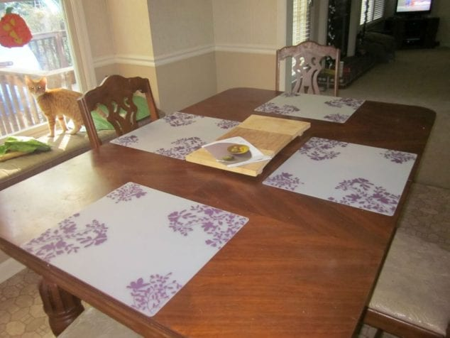 modern twist placemats review