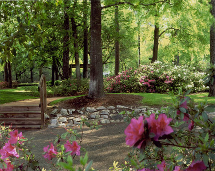 Eco-Friendly Landscaping Design Tips