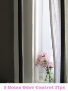 5 Home Odor Removal Tips