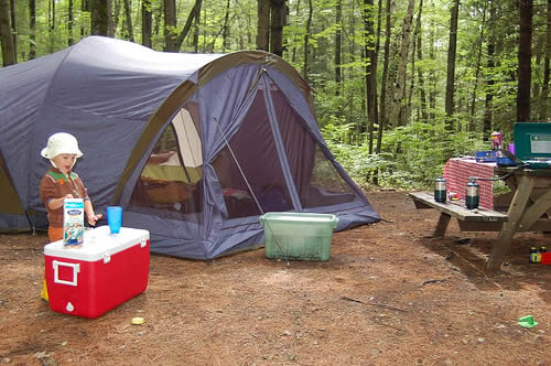 Campsite Safety
