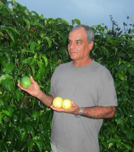 passionfruit farmer / Family Focus Blog