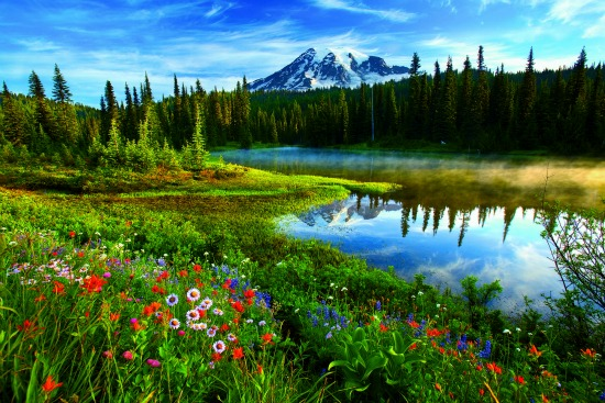 """From National Geographic """"Secrets of the National Parks"""" Book / Family Focus Blog"""