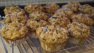 carrot pecan muffins / Family Focus Blog