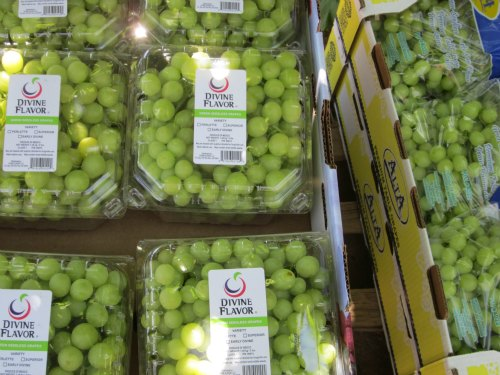 groupo alta divine flavor grapes