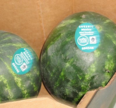 organic fair trade watermelon