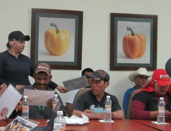DiveMex Fair Trade Worker Body