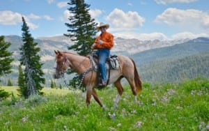 Horseback ride in yellowstone
