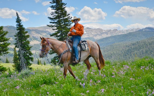6 Fun Activities in America's national parks- Horseback ride in Yellowstone