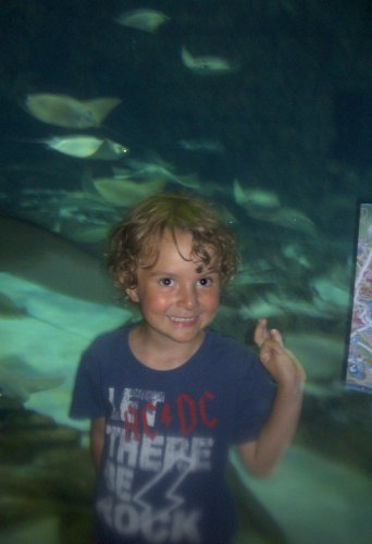 Summer Educational Activities Kids Will Love- trip to the aquarium