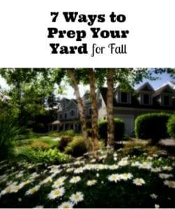 prep yard for fall