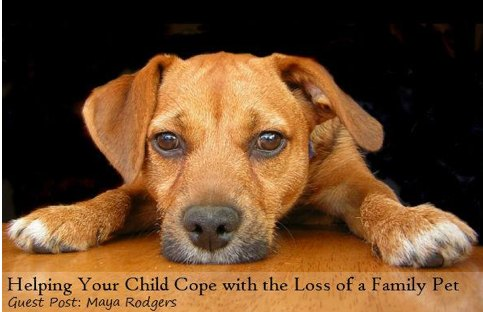How to Help Kids Deal with Loss of a Pet