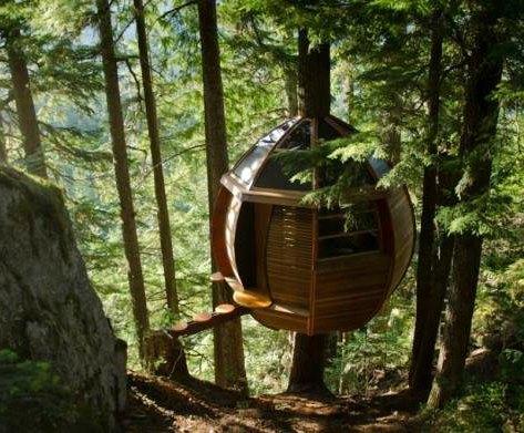 eco-friendly condor's nest treehouse