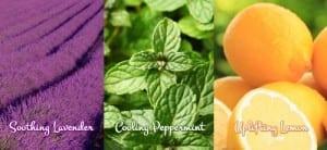 organic deodorant scents