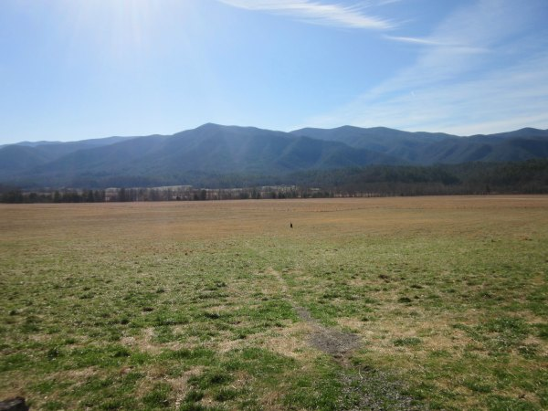 Cades Cove field Smoky Mountains