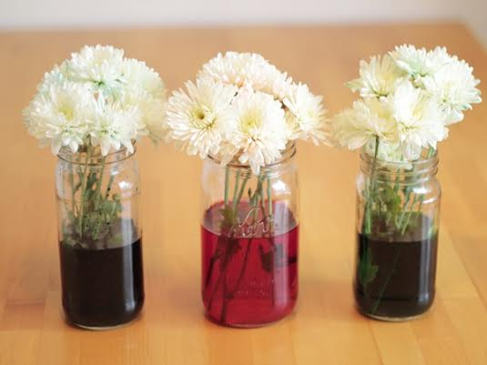 how to dye flowers
