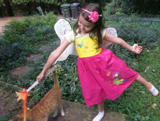 Homemade Fairy Costume