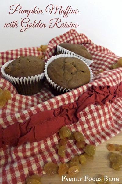 Pumpkin Muffin Recipe (Canned Pumpkin)