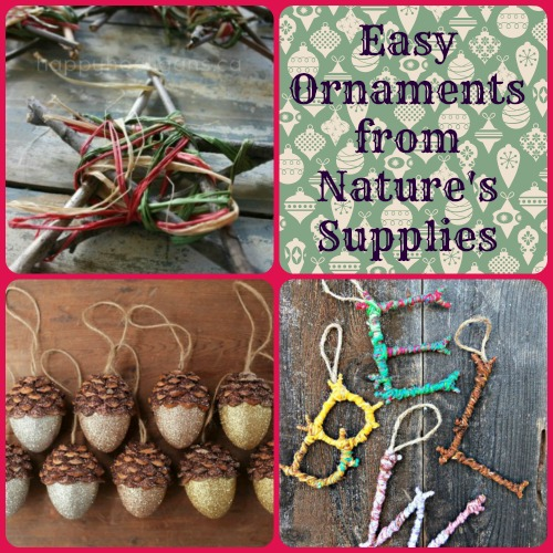 christmas ornaments from nature