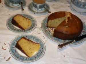 Seed Cake 2