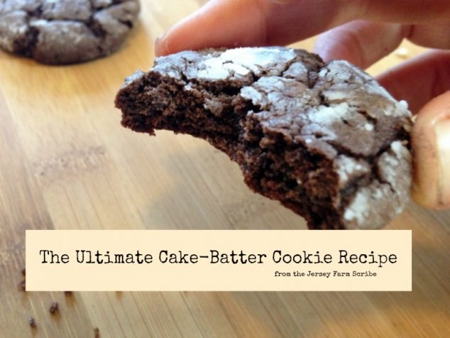 Ultimate Chocolate Cake Batter Cookie Recipe