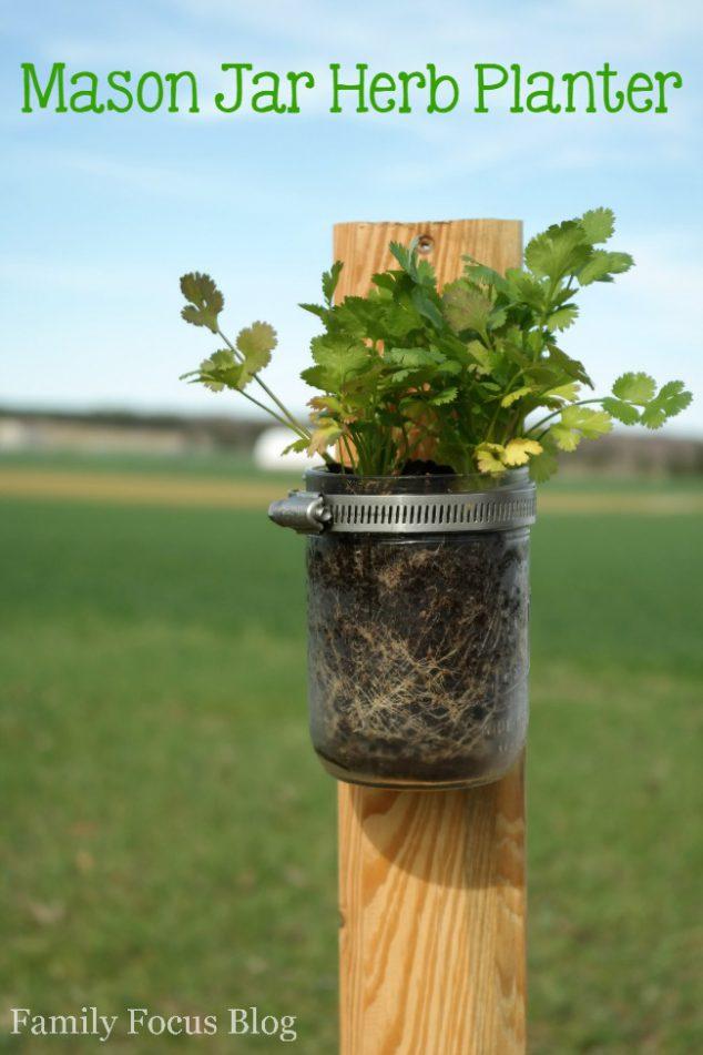Mason Jar Herb Planter