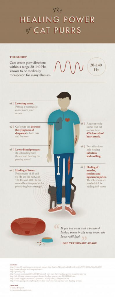 Healing-Cat-Purrs