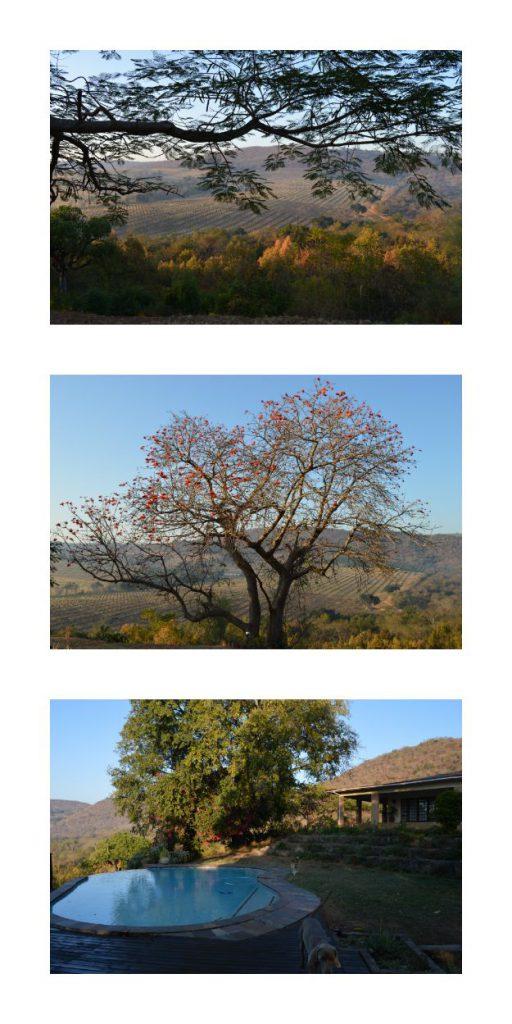 Mpumalanga Views From Abangane Guest Lodge