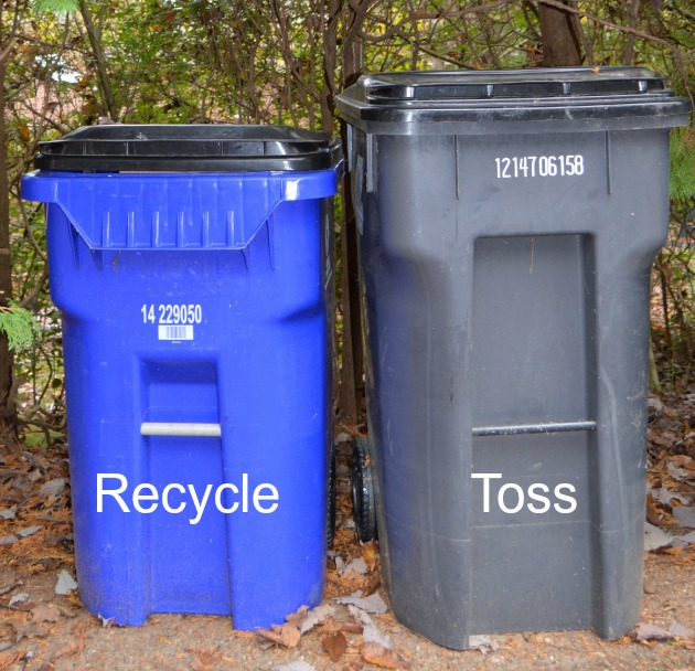 Recycle or Trash It