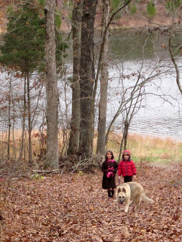 winter family walk-5 family fun winter activities