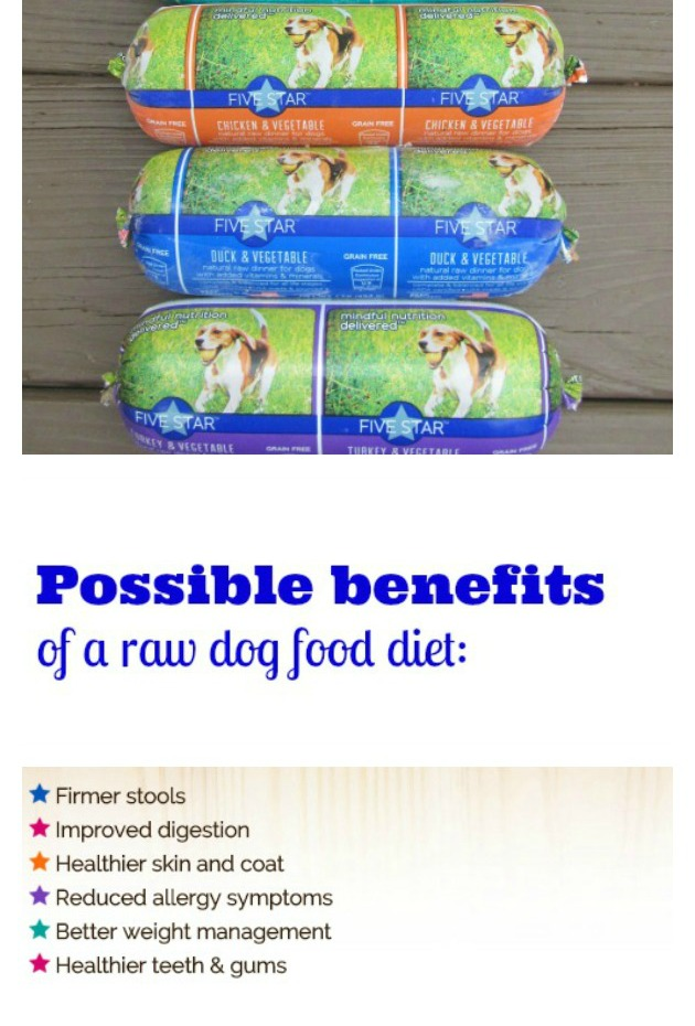 possible benefits of raw dog food diet