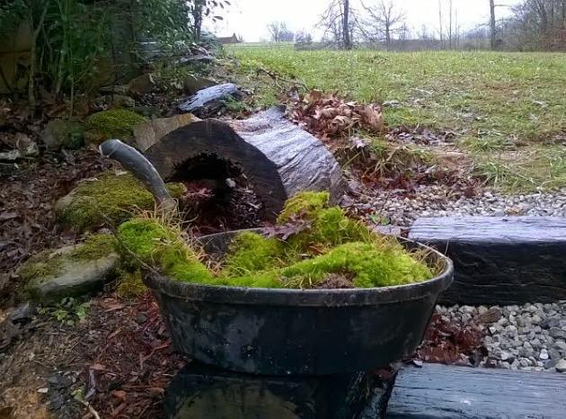 how to make a moss rock garden