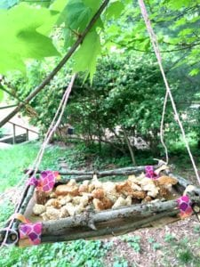 twig bird feeder