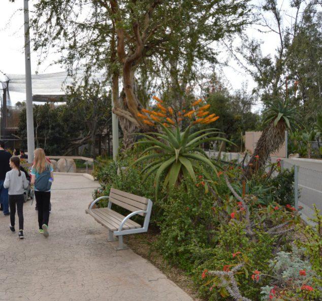 zoo plants