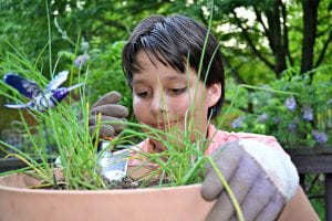 teaching kids gardening