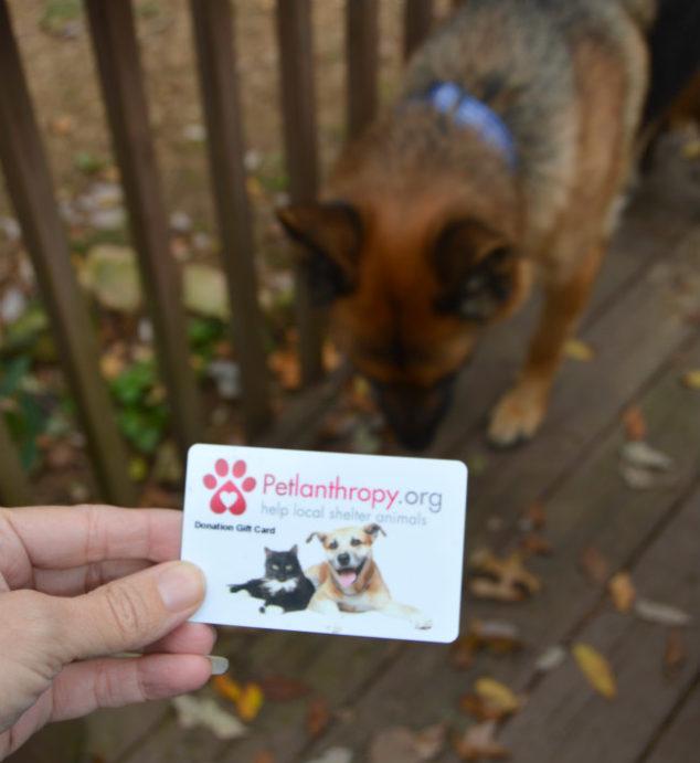 petlanthropy shelter donation gift cards