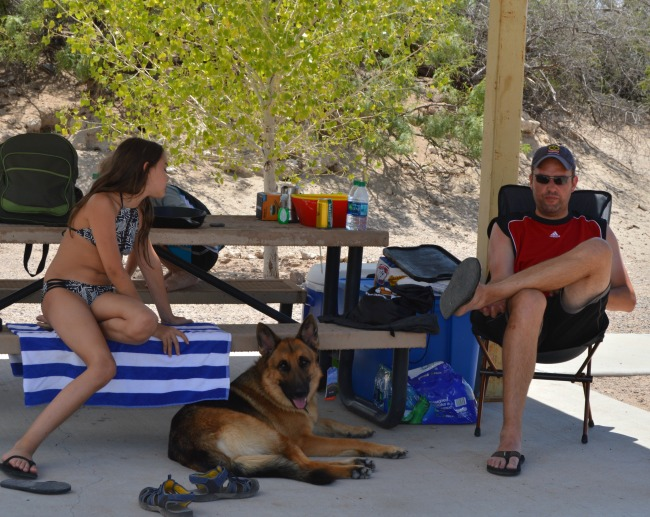dog at Elephant Butte