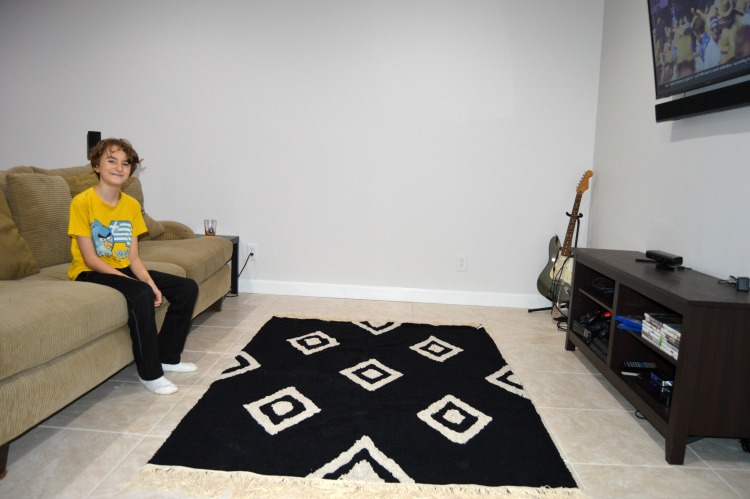 Want Kids And Pet Friendly Rugs Try