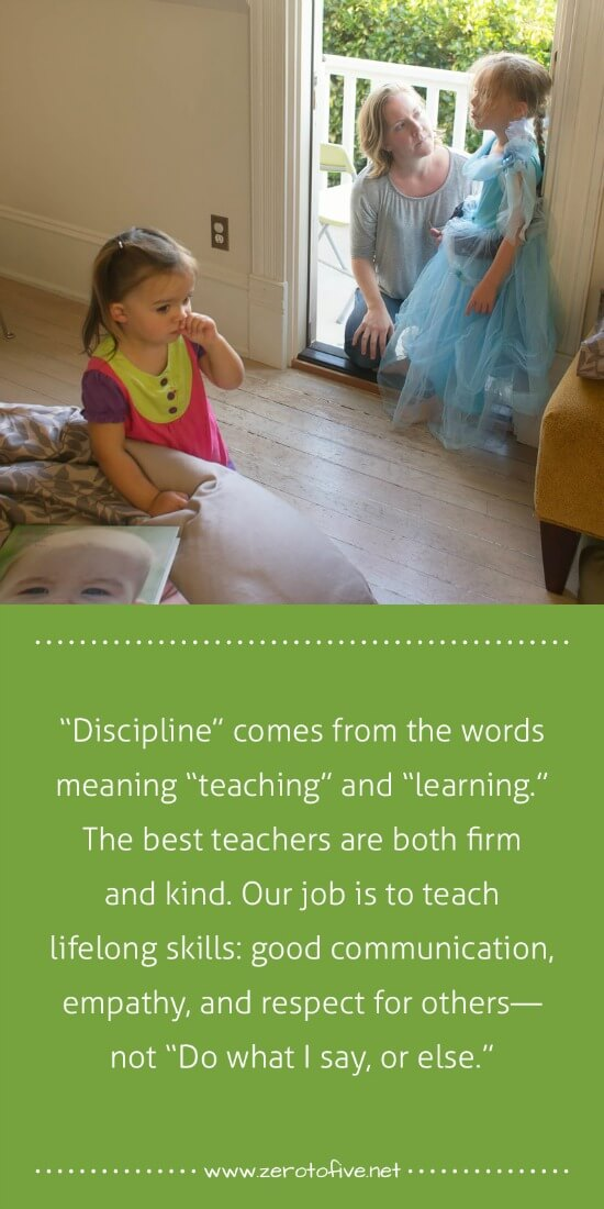 what is the definition of discipline