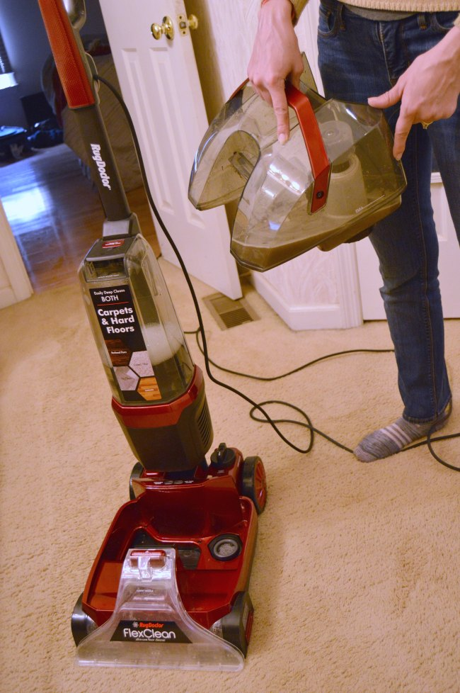 rug doctor carpet cleaner disgustification