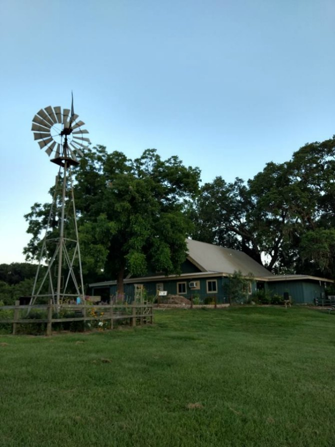 Brazos Bend State Nature Center