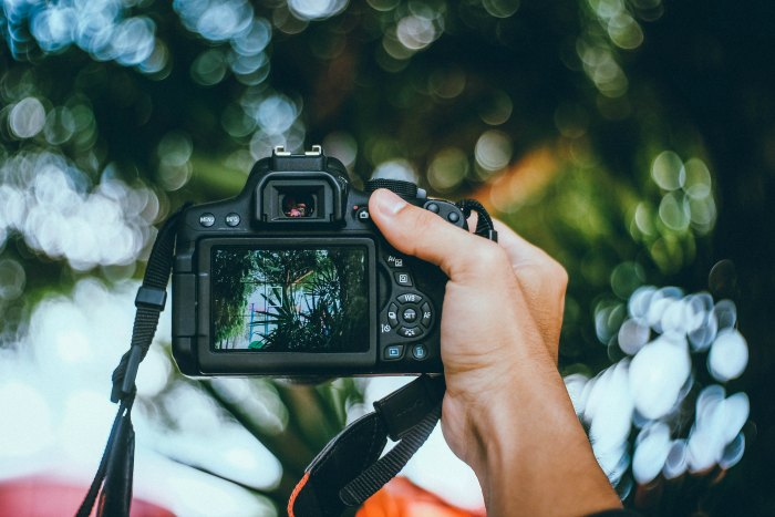 bokeh effect- digital photography tutorial