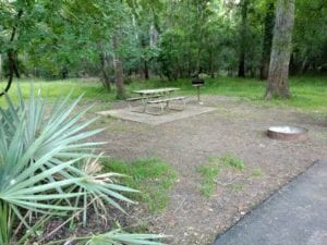 Brazos Bend State Park Camping