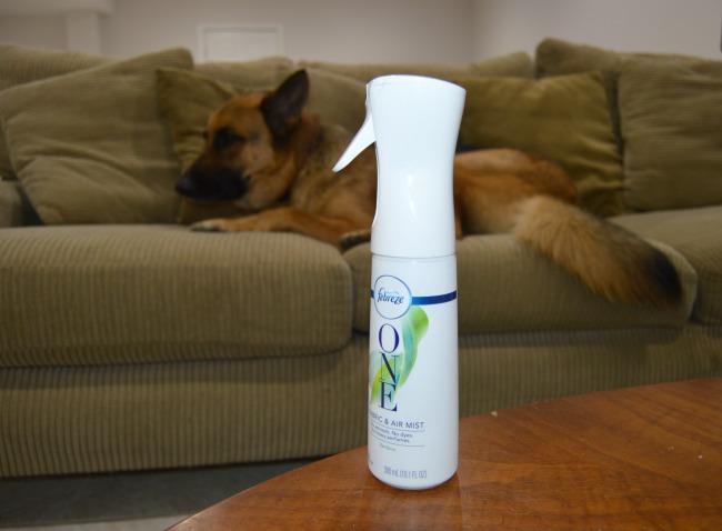 eliminate pet odors