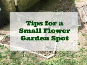 flower bed how to
