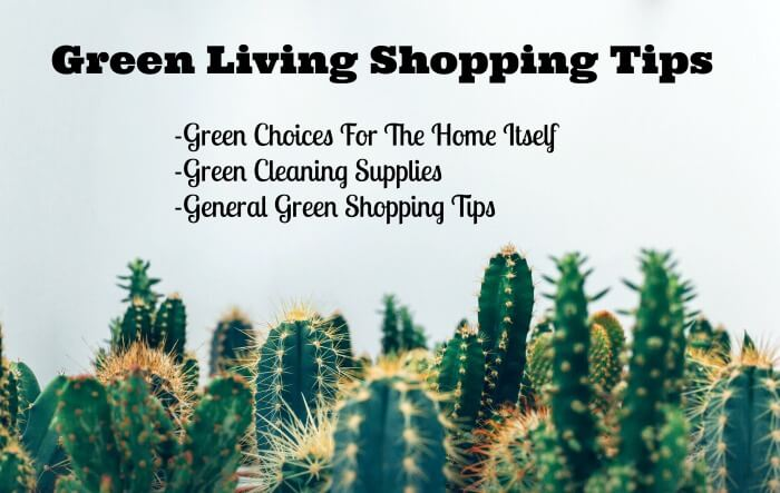 green living shopping tips