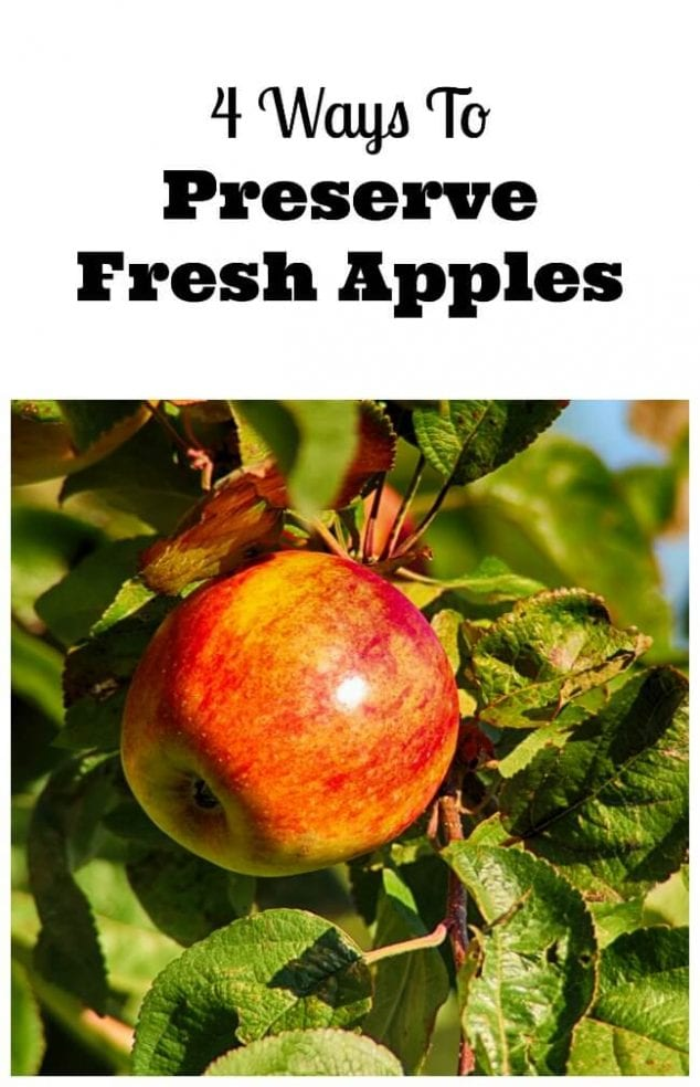 how to preserve apples