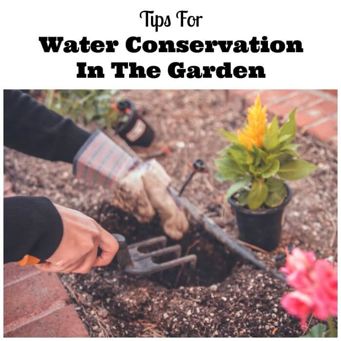 Water Conservation In The Garden