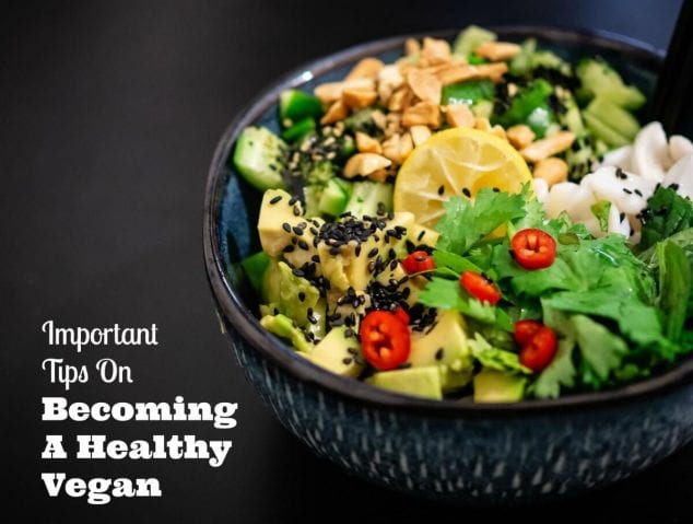 becoming a healthy vegan